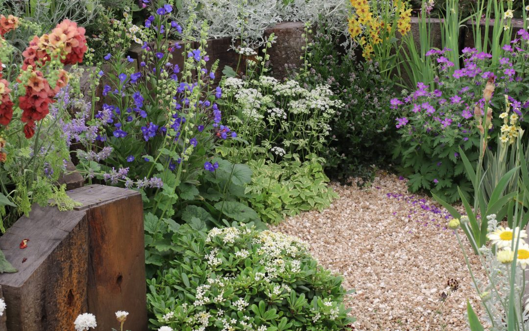 Small Plants – Make the most of the space you have